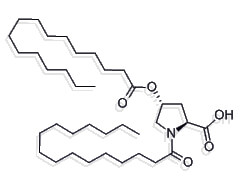 dipalmitynian hydroksyproliny
